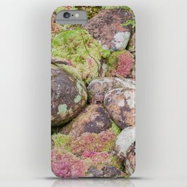 Moss iPhone Case