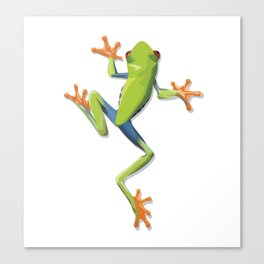 Greenery tree-frog Canvas Print