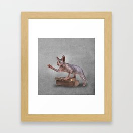 Drawing Sphynx kitten, hairless Framed Art Print
