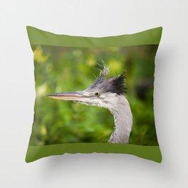 Young orphaned Ardea cinerea the grey heron Throw Pillow