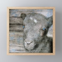 Lambkin Framed Mini Art Print