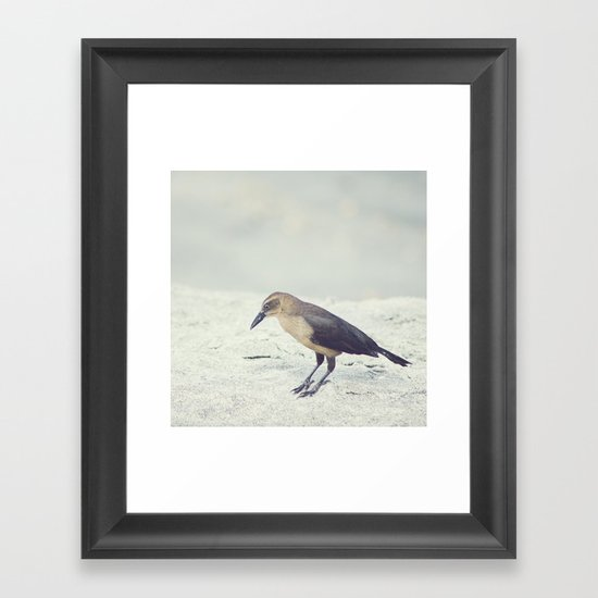 Little Bird I Framed Art Print