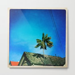 palm tree and sky Metal Print