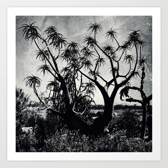 Upward towards consciousness while rooted in the ground Art Print