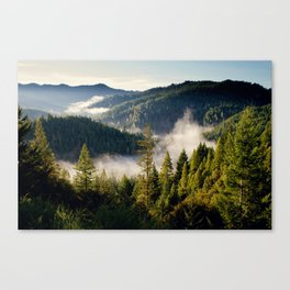 Adventures Canvas Print