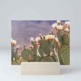 Prickly Pear Blooms I Mini Art Print