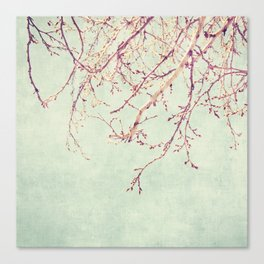 Chinese Spring Canvas Print