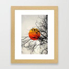 The rising birds Framed Art Print