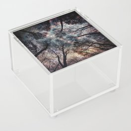 Starry Sky in the Forest Acrylic Box