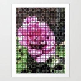 Rosas Moradas 1 Mosaic Art Print