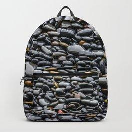 Polished Smooth Backpack
