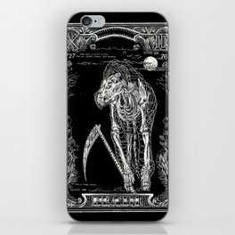 DEATH of Tarot Cat iPhone Skin