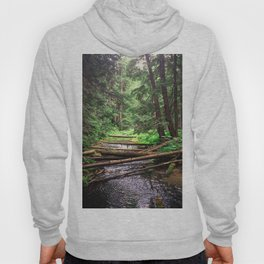 Enchanted Forest Hoody