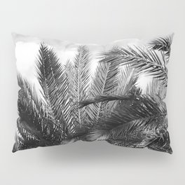 Vintage Palm Trees Floating in Tropical Clouds Pillow Sham