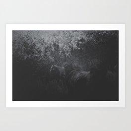 Field of Horses Art Print