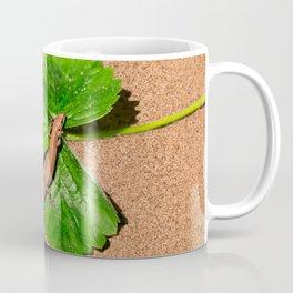 I am busy, I am tanning Coffee Mug