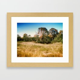 Before the fall Framed Art Print