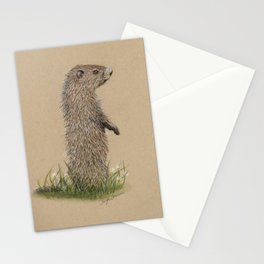 Juvenile Woodchuck Stationery Cards