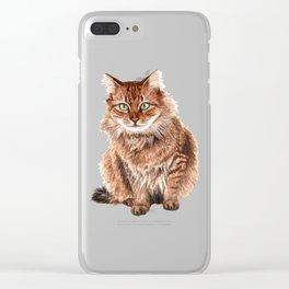 Somali cat portrait Clear iPhone Case