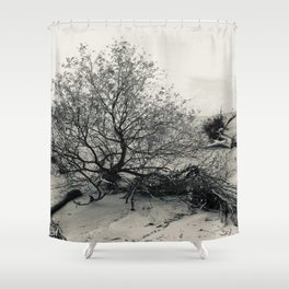 Erosion - Weathered Endless Beauty 7 Shower Curtain