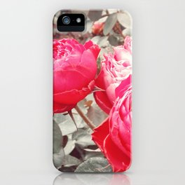 Aged Beauty iPhone Case