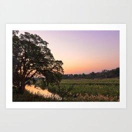 Kruger Park Twilight Art Print