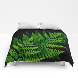 Fern Fronds on Black Comforters