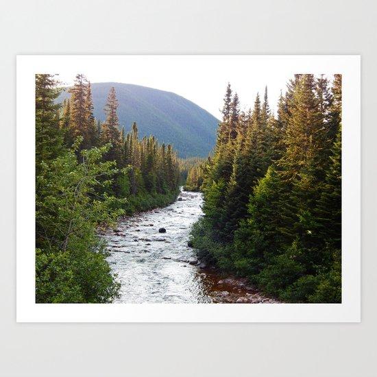 Mountain River Art Print