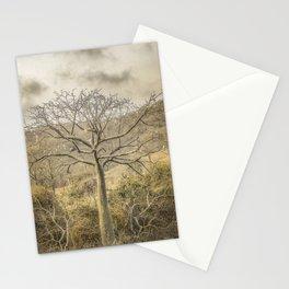 Ceiba Tree at Forest Guayas Ecuador Stationery Cards