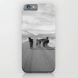 Spring Mountain Wild Horses iPhone Case