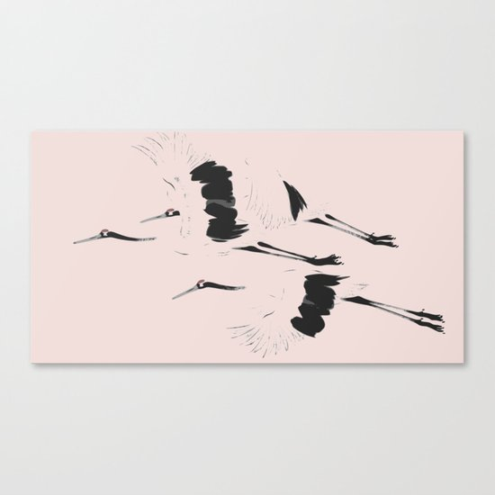 Pink Crane take flight Canvas Print