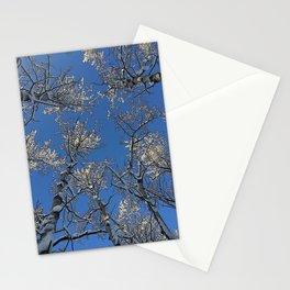 Snow White Poplar Stationery Cards