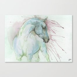 Arabian horse watercolor art Canvas Print
