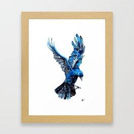 Azure Jack Framed Art Print