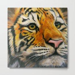 Lonely Tiger Metal Print