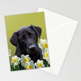 White daffodils with Labrador retriever Stationery Cards