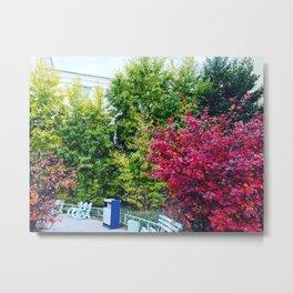 Natural Colors Metal Print