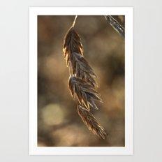 Prairie Wheat Art Print
