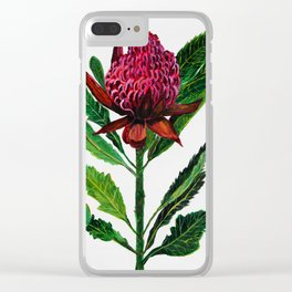 Red Flowers Floral Waratah Protea, botanical Clear iPhone Case