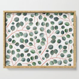 Simple Silver Dollar Eucalyptus Leaves on White Serving Tray