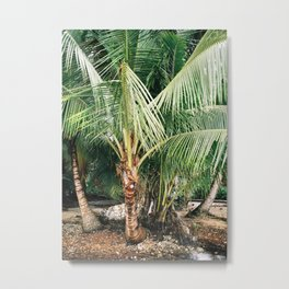 A piece of the Jungle   Panama travel photography   Tropical art Metal Print