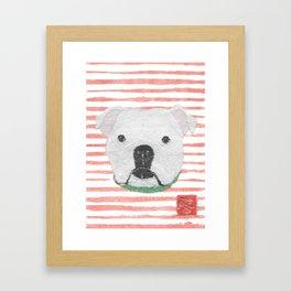 English Bulldog, White Bulldog, Modern Framed Art Print