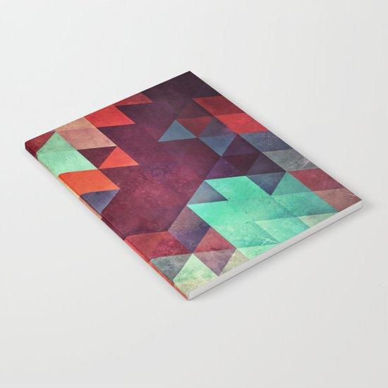lyzyyt Notebook