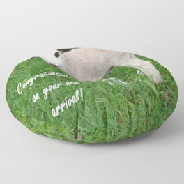 Congratulations On Your New Arrival Floor Pillow