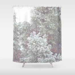 Winter Evergreen Shower Curtain