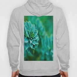 Green Succulent Mandala Hoody