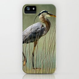 Great Blue At The Beach iPhone Case