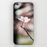 sakura iPhone & iPod Skins featuring Sakura by Lara Fotografica