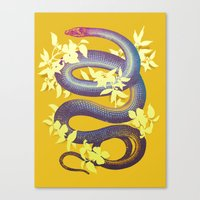snake Canvas Prints featuring Snake by The Wildest Little Things