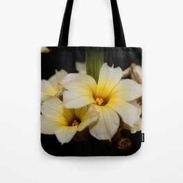 Yellow Mexican Satin Flowers Tote Bag